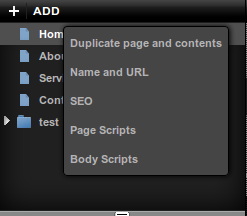 BaseKit Page Options