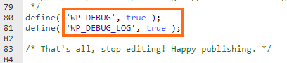Define WP Debug Log True