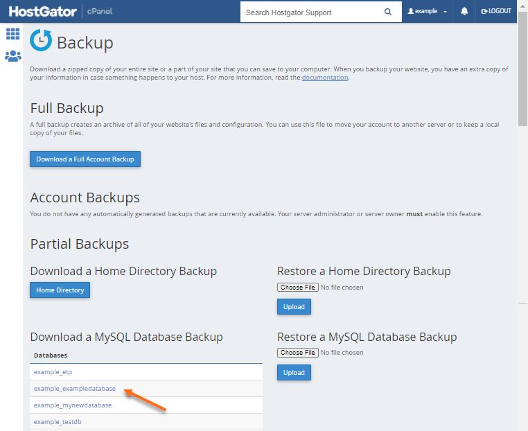 cPanel - Backup - Select your Database