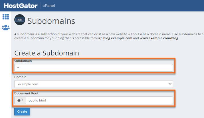 Wildcard Subdomain