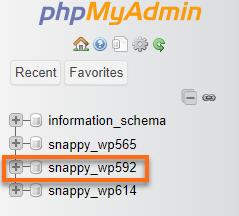 WordPress Database Name