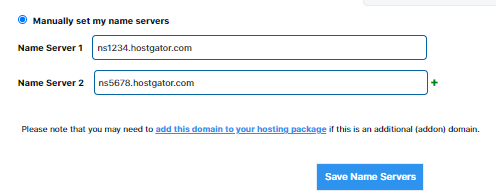 Manually Set Domain Name Servers