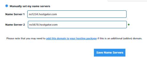 Manually Set Domain Name Servers