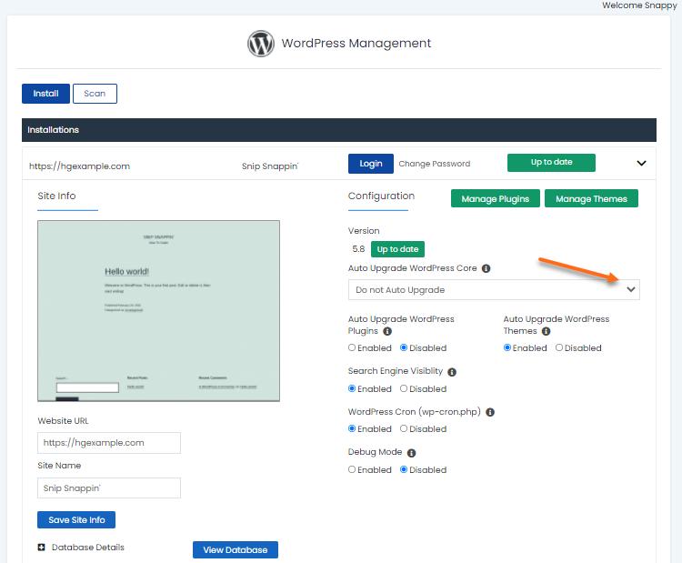 WordPress Manager - Core Settings
