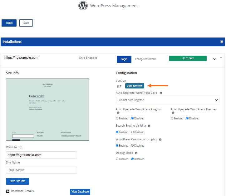 WordPress Manager - Version Upgrade