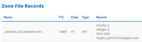 SRV record (Screenshot)