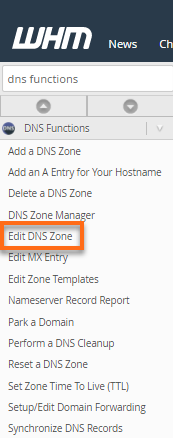 Edit DNS Zone section