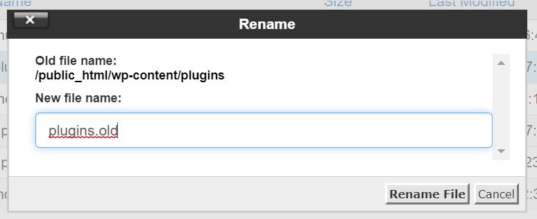 Renaming Plugin